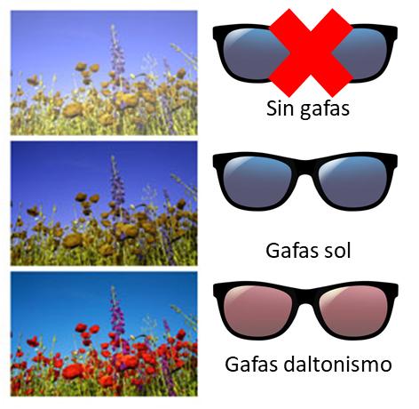 Imagen lentes para daltonismo de la Asociación Española de Optometristas Unidos